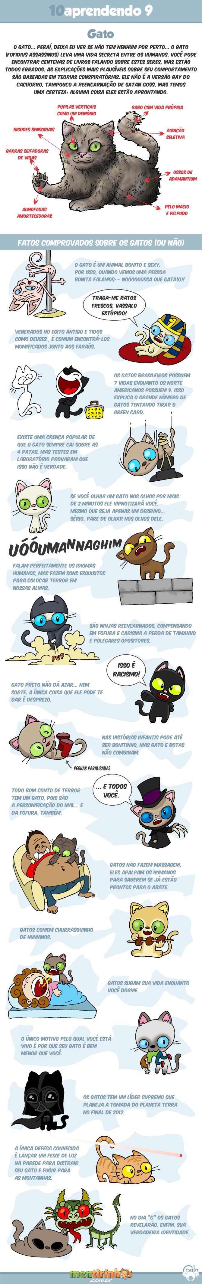 TOSKWITTER 6 TÚTIS TÚTIS TÚTIS - Página 39 10aprendendo9_gatos