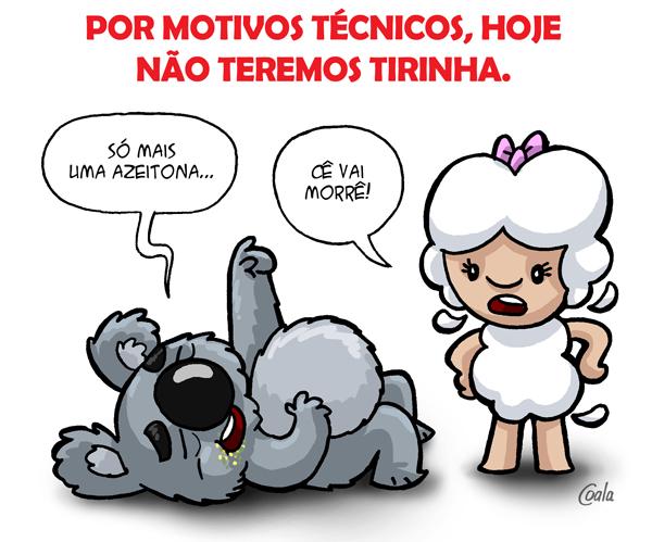 coala_ceia