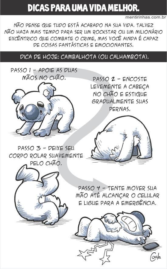 coala_dicas_cambalhota