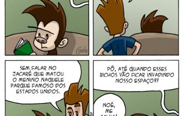 caco_159