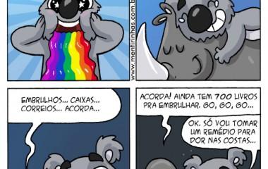 coala_segunda_horo