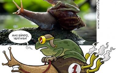 frog-on-snailOK