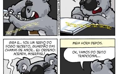 coala_culinaria2