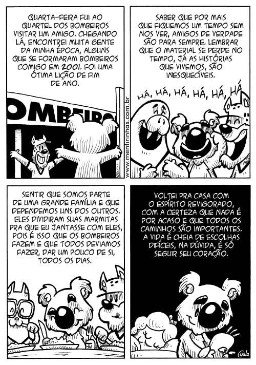 coala_audazes